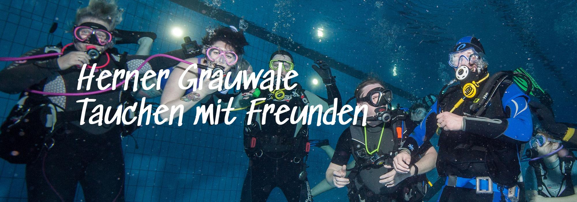 Herner Grauwale - Tauchen mit Freunden